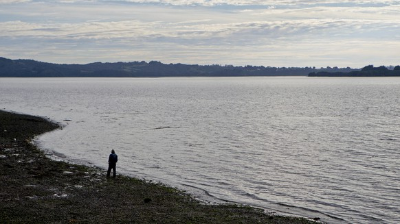 In this May 10, 2016 photo, a fisherman walks on the shore of the fishing village Quetalmahue in Chile's Chiloe island, Chile, during the country's worst ever
