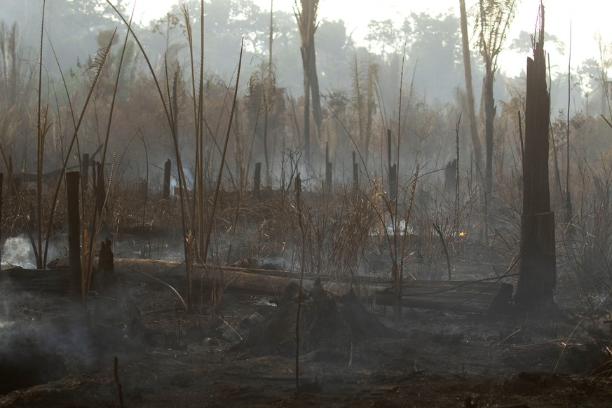 epa07796054 General view of the damage caused by the fires in the forest of Porto Velho, Brazil, on 26 August 2019. Seven Brazilian states have formally requested the help of the military to fight the fires burning in the Amazon.  EPA/Joédson Alves