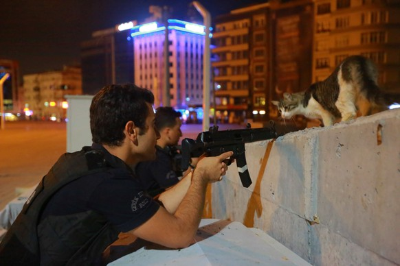 A cat looks on as a policeman aims his weapon during an attempted coup, in Istanbul, Turkey July 16, 2016. REUTERS/Kemal Aslan     TPX IMAGES OF THE DAY