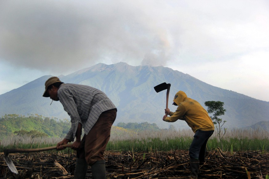 epa04841773 Two Indonesian farmers work on their field near the Mount Raung as its spews volcanic ash at Sumber Arum village in Banyuwangi, East Java, Indonesia, 11 July 2015. A volcanic eruption on Indonesia's Java island has forced the closure of four airports, including those on the popular tourist islands of Bali. Mount Raung, located in East Java province, has been spewing ash and rocks since June, prompting authorities to raise its alert to the second highest level.  EPA/CANDRA BUDI