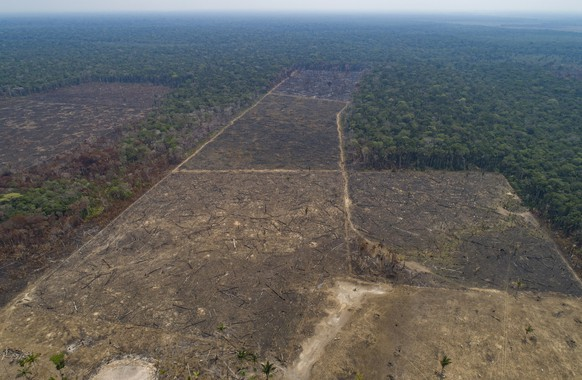Land recently burned and deforested by cattle farmers stands empty near Canutama in Amazonas state, Brazil, Monday, Sept. 2, 2019. The Brazilian Amazon saw 30,901 fires in August, the highest for the month since 2010, according to Brazil's National Institute for Space Research, drawing international criticism over the government's approach to environmental issues and its pro-business agenda. (AP Photo/Andre Penner)