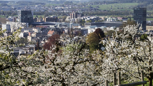 Bluehende Kirschbaeume in der Stadt Zug, fotografiert am Donnerstag, 19. April 2018. (KEYSTONE/Alexandra Wey) Blossoming cherry trees in Zug, photographed on Thursday, April 19, 2018. (KEYSTONE/Alexandra Wey)