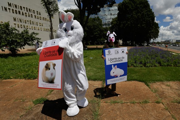 Activist dressed as Rabbits protest outside the headquarters of Brazil's Ministry of Science, in Brasilia, Brazil, Friday, March 14, 2014. The posters read in Portuguese