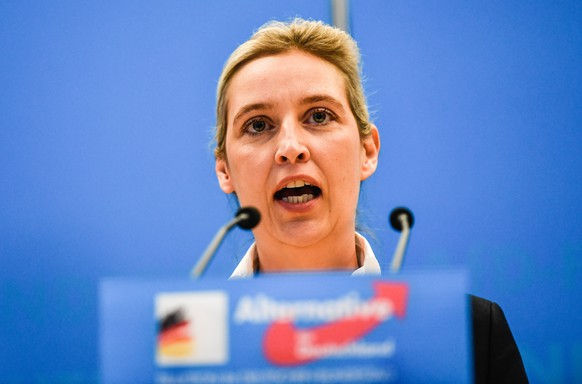 epa07286805 Alternative fuer Deutschland (AfD) party faction co-chairwoman in the German parliament Bundestag Alice Weidel speaks during a press conference in Berlin, Germany, 15 January 2019. Right populist party 'Alternative fuer Deutschland' will be observed by the German Federal Office for the Protection of the Constitution (Bundesamt fuer Verfassungsschutz, BfV). The BfV is tasked with intelligence-gathering on threats concerning the democratic order, the existence and security of the federation or one of its states, and the peaceful coexistence of peoples in Germany.  EPA/FILIP SINGER