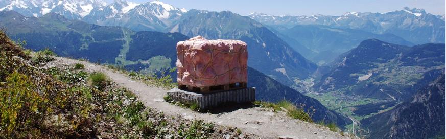 die frau mit dem fleisch oder was ein luxustouristen paket in den walliser alpen mit. Black Bedroom Furniture Sets. Home Design Ideas