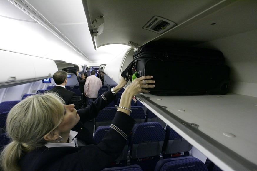 Hund wird in Flugzeug-Gepäckfach gesteckt - und stirbt