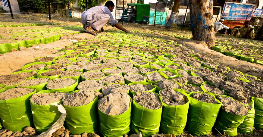 epa04457712 A gardener prepares sand for saplings plantation at a nursery in Lahore, Pakistan, 22 October 2014. Trees are one of the world's single largest sources of Oxygen, they not only reduce pollutions but also provide resistance to floods.  EPA/OMER SALEEM