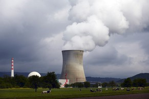 The nuclear power plant Leibstadt is pictured near the northern Swiss town Leibstadt May 1, 2014. REUTERS/Denis Balibouse (SWITZERLAND - Tags: ENERGY)