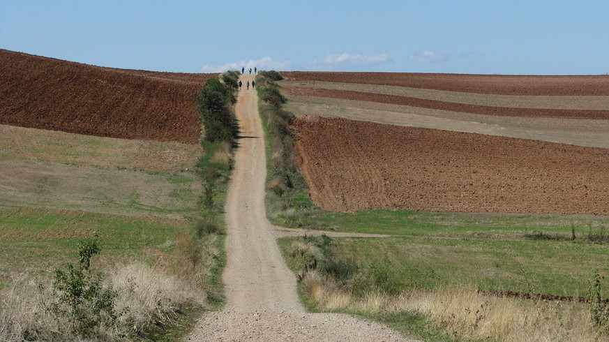 This Sept. 19, 2015 photo shows pilgrims walking a stretch of the Camino de Santiago across La Rioja farmland in Spain. People from around the world walk the camino frances, a 500-mile medieval pilgrimage route to the cathedral of Santiago de Compostela. The 500-mile ancient pilgrimage route takes a growing number of pilgrims through many art-filled towns. (Giovanna Dell'Orto via AP)