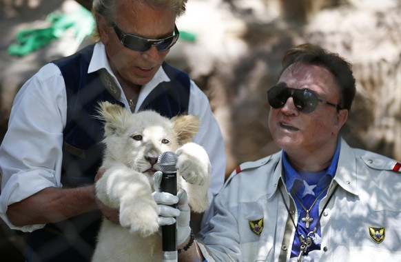 FILE - In this Thursday, July 17, 2014, file photo, Siegfried Fischbacher, left, holds up a white lion cub as Roy Horn holds up a microphone during an event to welcome three white lion cubs to Siegfried & Roy's Secret Garden and Dolphin Habitat, in Las Vegas. Horn, one half of the longtime Las Vegas illusionist duo Siegfried & Roy, died of complications from the coronavirus, Friday, May 8, 2020. He was 75. (AP Photo/John Locher, File) Siegfried Fischbacher,Roy Horn