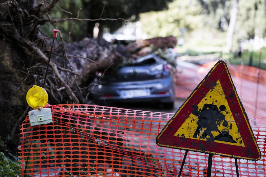 epa07131197 A car is hit by a fallen tree in Terme di Caracalla, Rome, Italy, 30 October 2018. The number of fatalities during the days of extreme weather in Italy rose to 10 on Tuesday. In many cities schools are closed again as they were the day before.  EPA/ANGELO CARCONI