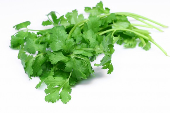 peterli petersilie gekräuselt flachblättrig italienische petersilie prezzemolo http://www.eatlikenoone.com/what-is-the-difference-between-flat-leaf-italian-and-curly-parsley.htm