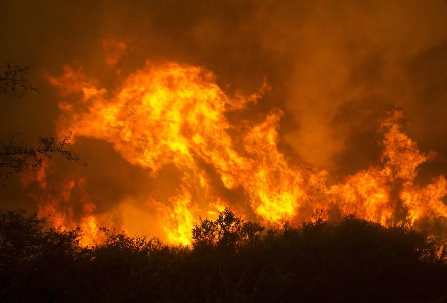 In Kalifornien toben Wald- und Buschbrände: Mehrere Tote