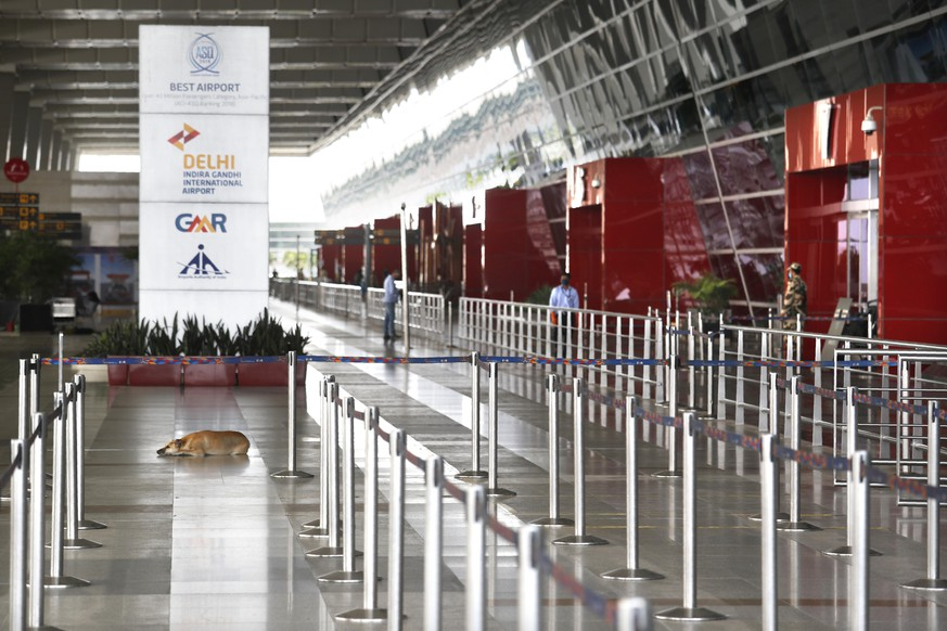 A stray dog sits at the deserted Indira Gandhi international airport during lockdown to control the spread of coronavirus in New Delhi, India, Friday, May 8,2020. India is carrying out several repatriation flights to bring back citizens stranded in various countries. (AP Photo/Manish Swarup)