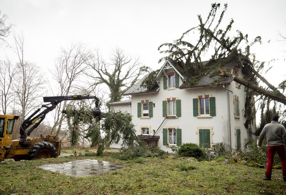 Trees have fallen on a house, in Montmollin, Val-de-Ruz, Switzerland, Monday, February 10, 2020. Severe warnings have been issued for Western and Northern Europe as storm Ciara (also known as Sabine in Germany, and Switzerland and Elsa in Norway) is bringing strong winds and heavy rains causing disruption of land and air traffic. Winter storm Ciara reached Switzerland last night. (KEYSTONE/Laurent Darbellay)