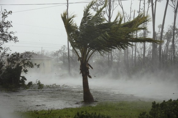 Strong wind from Hurricane Dorian blow the tops of trees while whisking up water from the surface of a canal in Freeport, Grand Bahama, Bahamas, Monday, Sept. 2, 2019. Hurricane Dorian hovered over the Bahamas on Monday, pummeling the islands with a fearsome Category 4 assault that forced even rescue crews to take shelter until the onslaught passes. (AP Photo/Tim Aylen)