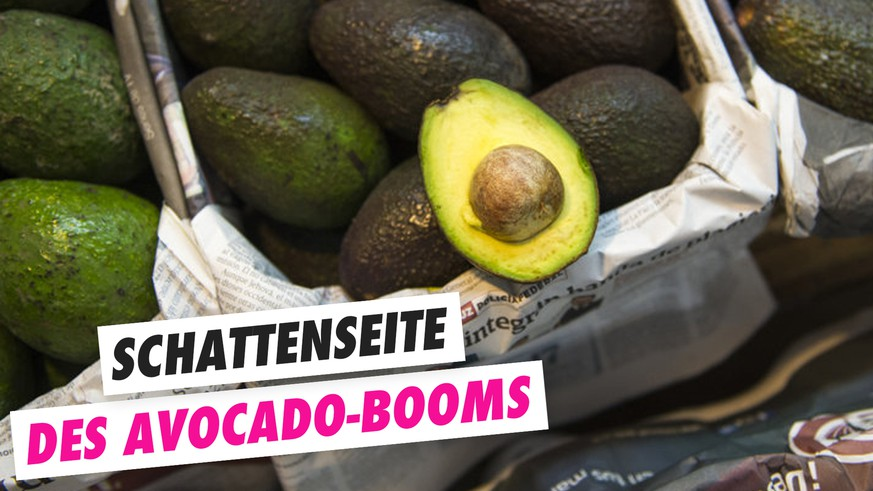 zu wenig wasser wegen avocado produktion watson