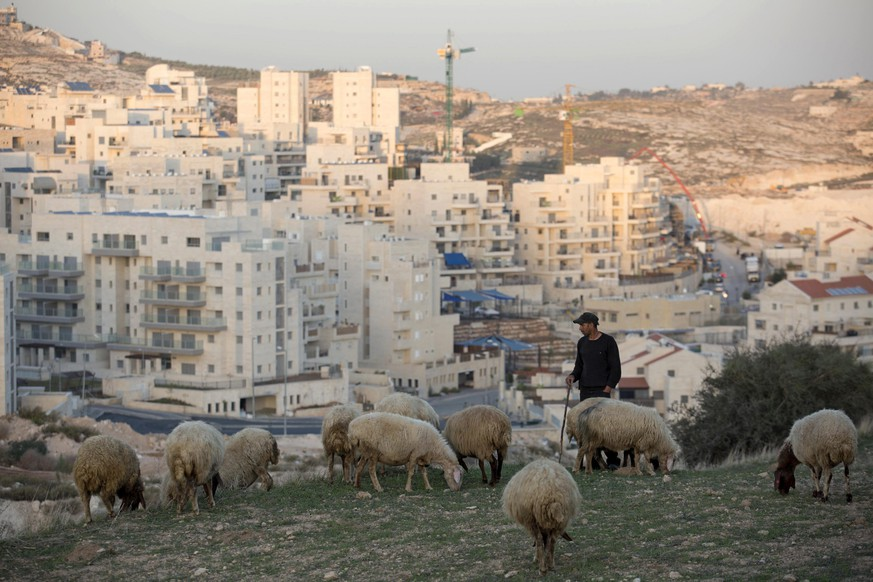 epa04496733 A Palestinian shepherd grazes sheep near the East Jerusalem neighborhood called in Hebrew 'Har Homa' and Arabic as 'Jabal abu Ghneim,' East Jerusalem, Israel, 20 November 2014. According to media reports the US Government has criticised the Israeli Governments announcement, 19 November, that 50 new housing units will be built in the neighborhood, annexed to Jerusalem from the West Bank after the June 1967 War, which comes at a time of extreme tension between Israelis and Palestinians.  EPA/ABIR SULTAN