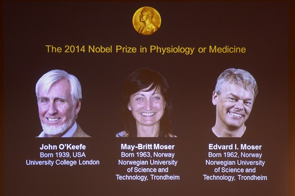 (LtoR) A giant screen displays the image of British-American researcher John O'Keefe and Norwegian duo May-Britt Moser and Edvard I Moser at a press conference of the Nobel Committee to announce the winner of the 2014 Nobel Medicine Prize on October 6, 2014 at the Karolinska Institutet in Stockholm, Sweden. O'Keefe and the duo won the Nobel Medicine Prize for discovering an inner GPS system in the brain. 