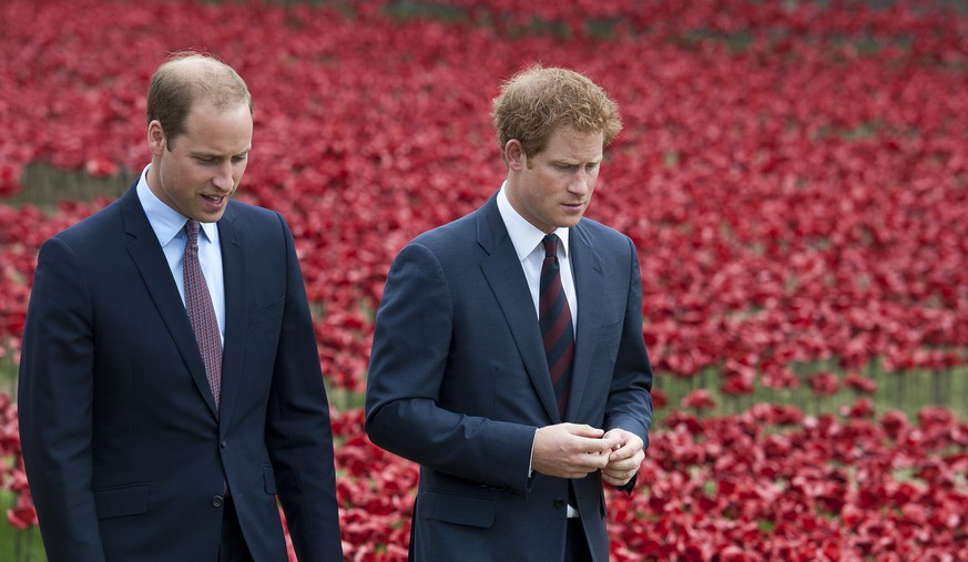 epa08116537 (FILE) - Britain's Prince William, Duke of Cambridge (L) and Prince Harry, Duke of Sussex, (R) walk through a sea of red poppies inside the moat at the Tower of London in London, Britain, 05 August 2014 (reissued 10 January 2020). Britain's Prince Harry and his wife Meghan have announced in a statement on 08 January that they will step back as 'senior' royal family members and work to become financially independent.  EPA/WILL OLIVER *** Local Caption *** 54290092