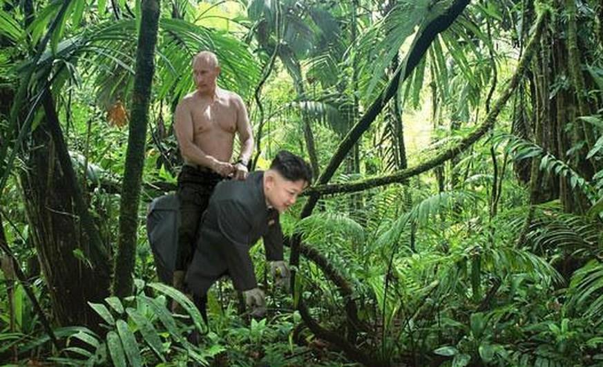 Putin Reitet Bär