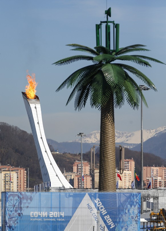 The Olympic Cauldron and flame are seen behind an artificial palm tree in the Olympic Park during the 2014 Winter Olympic Games in Sochi February 12, 2014. REUTERS/Shamil Zhumatov  (RUSSIA - Tags: SPORT OLYMPICS)